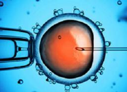 全球领先的染色体及性别筛查技术