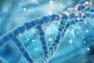 遗传缺陷携带者的筛查是如何运用在美国试管婴儿上的