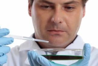 生物学家警告:试管婴儿技术的使用将会带来健康问题?