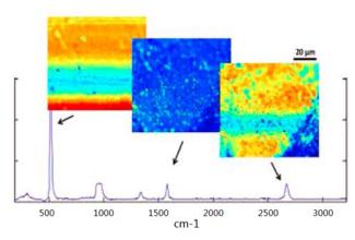 拉曼光谱新技术改善做试管婴儿时精子选择问题