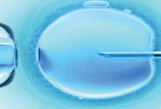 美国试管婴儿的ICSI技术