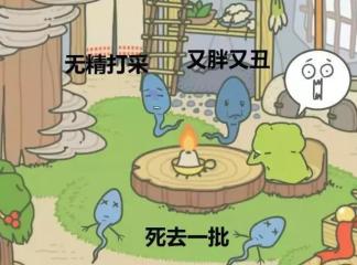 你想养个蛙,你想有个家,你照顾好你的蝌蚪了吗?(下)