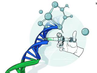 预测试管婴儿成功率的遗传检测系统成功开发