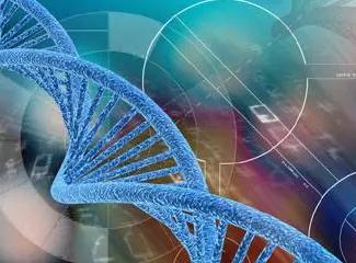 高龄人士,染色体异常致不孕不育