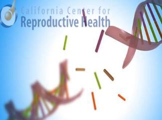 试管婴儿精子DNA碎片率过高该怎么办?