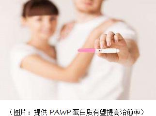 试管婴儿新疗法给不育男性带来希望