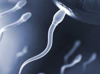 精子RNA诊断测试创造解决不孕不育新可能